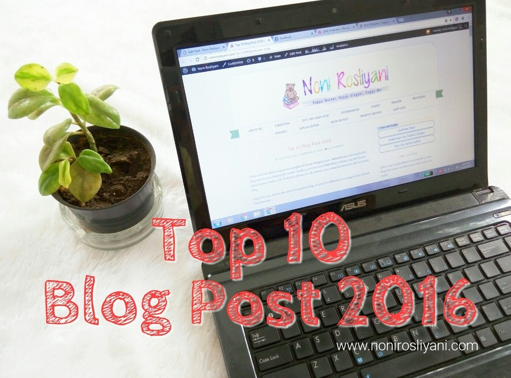 Top 10 Blog Post 2016